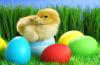 Przedstawienie teatralne - Radosna Wielkanoc
