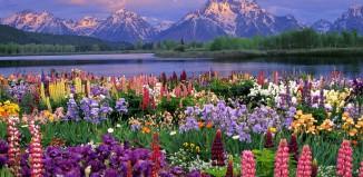 Wiosną jest pięknie