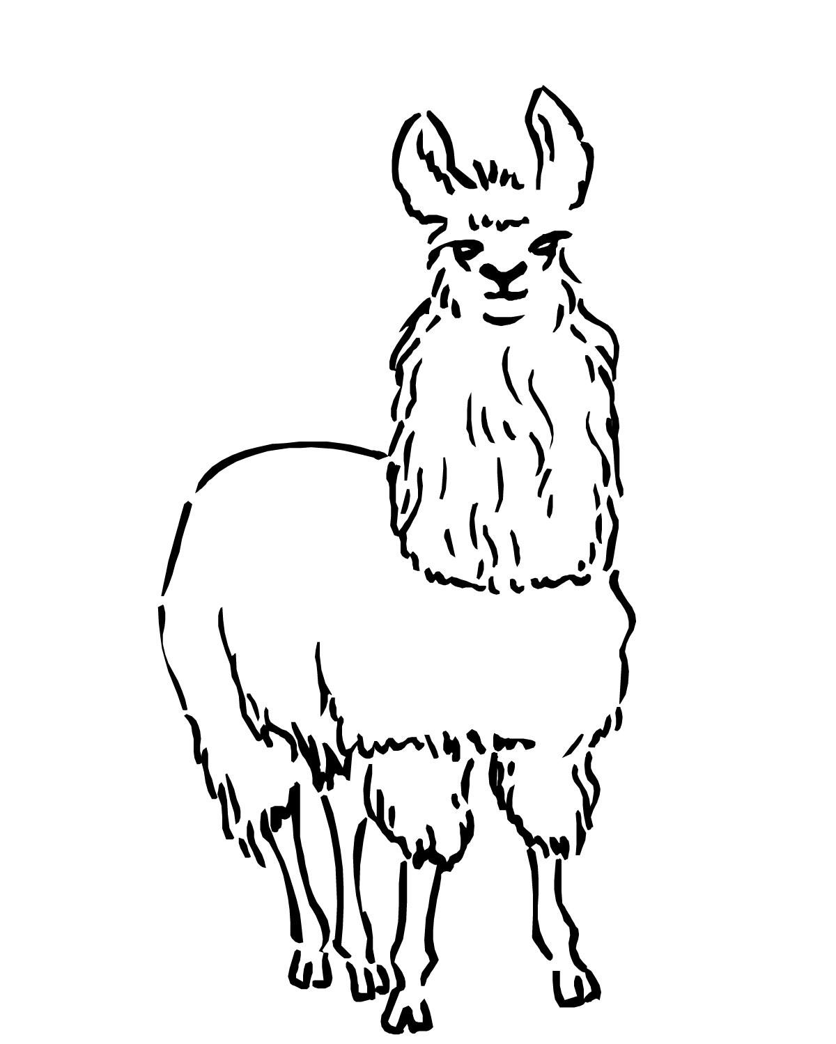 kolorowanki zwierzęta do druku i malowanki